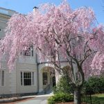 Peabody Institute Library, Danvers, Massachusetts