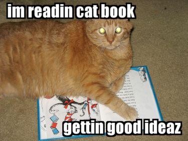 Teen Read Week Idea : Lolcats | Elizabeth B. ThomsenLolcat Celebrate
